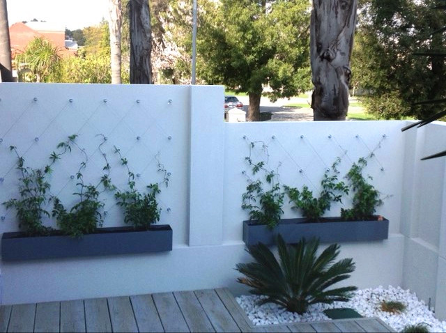 Vertical Gardens With Avaganda Atlantis Gro Wall Pocket